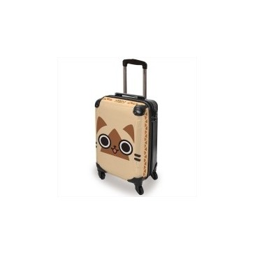 AIROU Carry Case